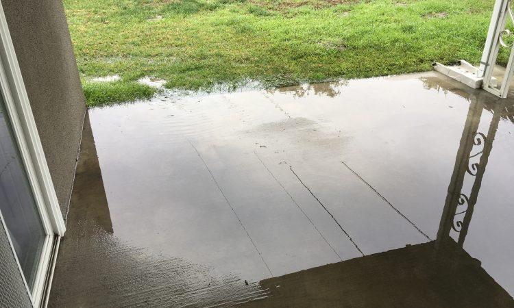 Rain Water (outside)